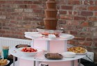 Chocolate fountain & Surround